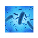 What is Antimicrobial Technology?